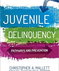 Test Bank for Juvenile Delinquency Pathways and Prevention 1st Edition Mallett